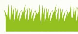 陰木性の草